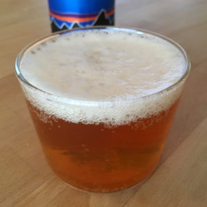 パタゴニアのビール Long Root ALE