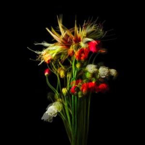 そうだ、花束を贈ろう。POLA TALKER'S MUSEUMに行って思うこと。